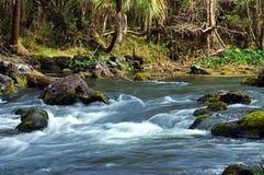 ποταμός ορμητικά σημείων π&omicr Στοκ εικόνες με δικαίωμα ελεύθερης χρήσης