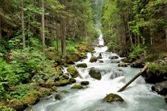 Ποταμός δολομίτη στοκ φωτογραφία με δικαίωμα ελεύθερης χρήσης