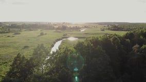 Ποταμός! Ο ποταμός στον τομέα! απόθεμα βίντεο