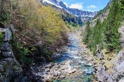 Ποταμός που ρέει στην κοιλάδα Ordesa, Αραγονία, Ισπανία Στοκ Εικόνες