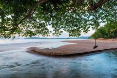 Ποταμός που ρέει στη θάλασσα κάτω από το φύλλωμα ενός δέντρου, μια άποψη ο Στοκ φωτογραφία με δικαίωμα ελεύθερης χρήσης