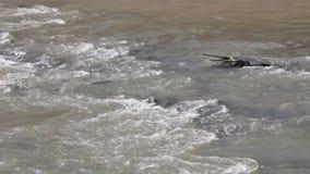 Ποταμός που τρέχει πέρα από τους βράχους στην Ταϊλάνδη φιλμ μικρού μήκους