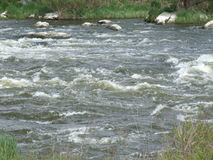 ποταμός προγραμματιστικ&om προαστιακός περίπατος άνοιξη ημέρας δασικός Στοκ Φωτογραφία