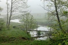 ποταμός πρωινού Στοκ Φωτογραφίες