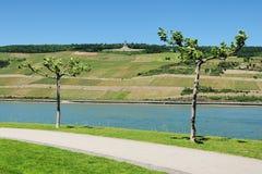 Ποταμός Ρήνος και Niederwalddenkmal κοντά στην πόλη RÃ ¼ desheim Στοκ φωτογραφία με δικαίωμα ελεύθερης χρήσης