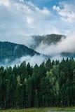 ποταμός Ρωσία Σιβηρία περιοχών altai katun Στοκ φωτογραφία με δικαίωμα ελεύθερης χρήσης