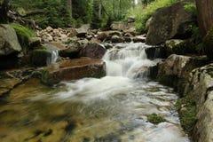 Ποταμός σε έναν δασικό καταρράκτη Πράσινα και καφετιά χρώματα Στοκ φωτογραφία με δικαίωμα ελεύθερης χρήσης