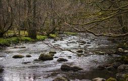 Ποταμός σε Grasmere Στοκ φωτογραφία με δικαίωμα ελεύθερης χρήσης