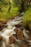 ποταμός σκωτσέζικα Στοκ φωτογραφία με δικαίωμα ελεύθερης χρήσης