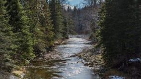 Ποταμός σολομών σε Percre Κεμπέκ στοκ εικόνες με δικαίωμα ελεύθερης χρήσης