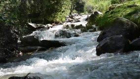 Ποταμός στα βουνά της πόλης του Αλμάτι απόθεμα βίντεο