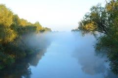 Ποταμός στην ομίχλη πρωινού Δέντρα και ουρανός Στοκ φωτογραφίες με δικαίωμα ελεύθερης χρήσης
