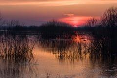 Ποταμός στην Ουκρανία Στοκ εικόνες με δικαίωμα ελεύθερης χρήσης