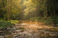 Ποταμός στην πτώση νερού του Yong, Nakorn sritumarat, Ταϊλάνδη Στοκ φωτογραφία με δικαίωμα ελεύθερης χρήσης
