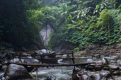 Ποταμός στη ζούγκλα στοκ φωτογραφία