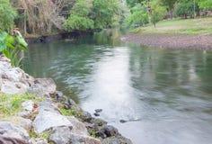 Ποταμός στη ζούγκλα Μικρός ποταμός στη ζούγκλα Στοκ Εικόνες