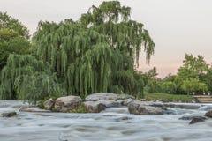 Ποταμός στη Νότια Αφρική Στοκ φωτογραφία με δικαίωμα ελεύθερης χρήσης