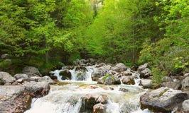 Ποταμός στη φύση Στοκ Εικόνα