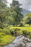Ποταμός στον καταρράκτη Λα Fortuna Arenal στο εθνικό πάρκο, Κόστα Ρίκα Στοκ Εικόνες