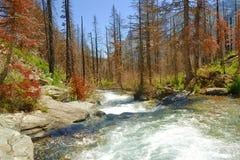Ποταμός στον παγετώνα moutains στοκ φωτογραφία με δικαίωμα ελεύθερης χρήσης