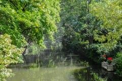 Ποταμός στο δάσος όλη η πράσινη φύση στοκ εικόνες με δικαίωμα ελεύθερης χρήσης
