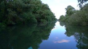 Ποταμός στο δέλτα Δούναβη απόθεμα βίντεο