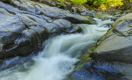 Ποταμός στο εθνικό πάρκο Hirkan σε Lankaran Αζερμπαϊτζάν Στοκ εικόνα με δικαίωμα ελεύθερης χρήσης