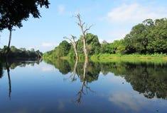 Ποταμός στο εθνικό πάρκο Uda Walawe στοκ εικόνα με δικαίωμα ελεύθερης χρήσης