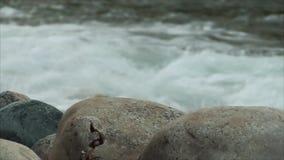 Ποταμός στο μοντάρισμα με την πέτρα απόθεμα βίντεο