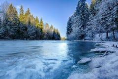Ποταμός στο χειμερινό δάσος Στοκ Εικόνες