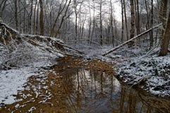Ποταμός στο χειμερινό δάσος Στοκ φωτογραφία με δικαίωμα ελεύθερης χρήσης