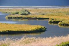 Ποταμός στο Berg, βόρεια Ισλανδία στοκ φωτογραφία