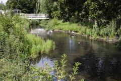 Ποταμός στο Norfolk Στοκ φωτογραφίες με δικαίωμα ελεύθερης χρήσης