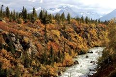ποταμός της Αλάσκας Στοκ εικόνες με δικαίωμα ελεύθερης χρήσης