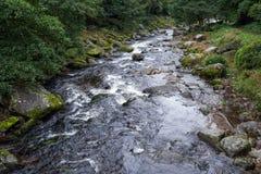 Ποταμός της ανατολικής Lyn Στοκ εικόνες με δικαίωμα ελεύθερης χρήσης