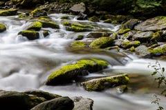 Ποταμός της ανατολικής Lyn, Watersmeet, ο Βορράς Devon, UK Στοκ Φωτογραφία