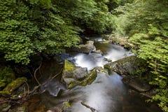 Ποταμός της ανατολικής Lyn, Watersmeet, ο Βορράς Devon, UK Στοκ εικόνα με δικαίωμα ελεύθερης χρήσης