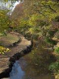 ποταμός της Ιαπωνίας κήπων Στοκ Εικόνα