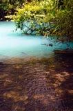 Ποταμός της Celeste: Όπου ο μαγικός αρχίζει Στοκ Εικόνα
