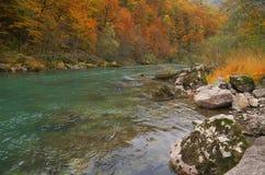 Ποταμός της Tara στο φαράγγι κοντά στο 5$α  urÄ ` eviÄ ‡ μια γέφυρα της Tara, Μαυροβούνιο - εικόνα φθινοπώρου Στοκ Φωτογραφία