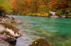 Ποταμός της Tara στο φαράγγι κοντά στο 5$α  urÄ ` eviÄ ‡ μια γέφυρα της Tara, Μαυροβούνιο - εικόνα φθινοπώρου Στοκ εικόνα με δικαίωμα ελεύθερης χρήσης