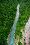 Ποταμός της Tara στοκ εικόνες με δικαίωμα ελεύθερης χρήσης