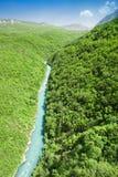 Ποταμός της Tara Στοκ φωτογραφίες με δικαίωμα ελεύθερης χρήσης