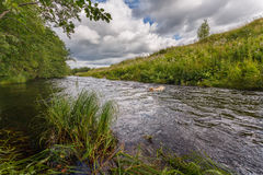 ποταμός τοπίων Στοκ εικόνες με δικαίωμα ελεύθερης χρήσης