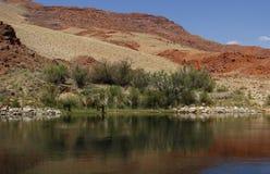 Ποταμός του Κολοράντο, Αριζόνα, ΗΠΑ Στοκ εικόνα με δικαίωμα ελεύθερης χρήσης