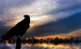 ποταμός του Νείλου τραπ&epsi στοκ εικόνες με δικαίωμα ελεύθερης χρήσης
