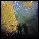 Ποταμός του Σικάγου με τις σκιές των ανθρώπων στο riverwalk και την αντανάκλαση των κτηρίων στο νερό Στοκ Φωτογραφίες