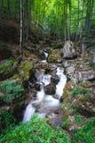 Ποταμός του Bela, βαλκανικό βουνό στοκ εικόνα με δικαίωμα ελεύθερης χρήσης