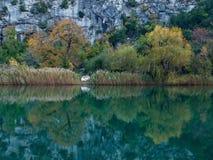 Ποταμός το φθινόπωρο Στοκ Εικόνα