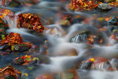 Ποταμός το φθινόπωρο Στοκ Φωτογραφίες